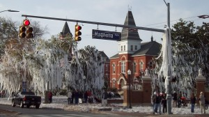 A beautiful Auburn tradition--rolling Toomer's Corner with toilet paper... and plenty of it!